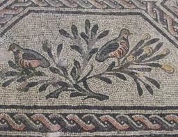 birds and leaves, Aquilea