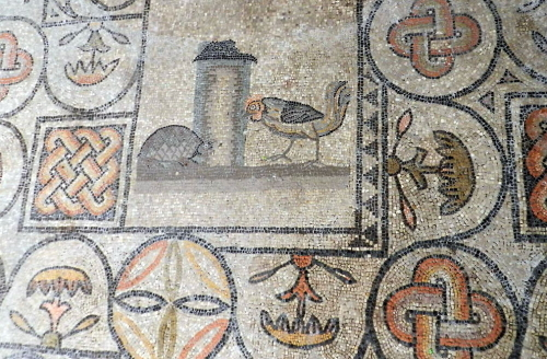 Aquileia mosaic, tortoise and cockerel.