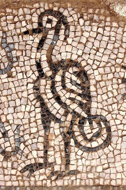 Little Bird Mosaics From Ancient Sites