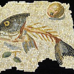 unswept floor Aquileia-ari kokomosaico