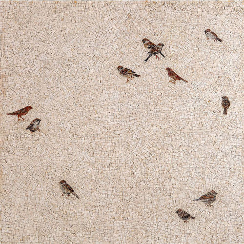 Christina Nakou, birds