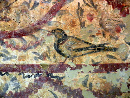 Pigeon. Early Christian tomb painting, Byzantine Museum, Thessaloniki.