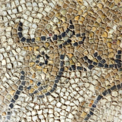 Bull detail. 5th century floor. Byzantine Museum of Thessaloniki.