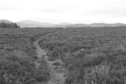 Path back from the cairn. Kirkmichael, Scotland.