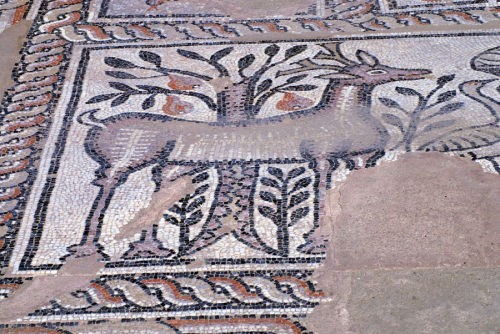Stobi mosaics, Macedonia. Pear tree and deer. Image from: users.stlcc.edu