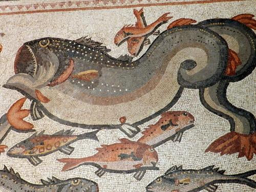 Lod mosaic, whale ?
