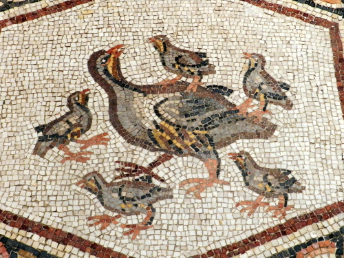 Lod mosaic, rock partridge and chicks.