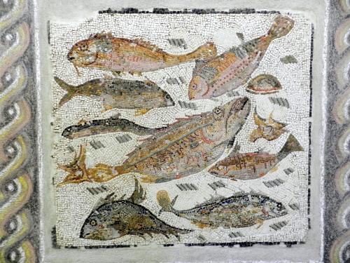 Roman fish mosaic from Palazzo Massimo Museum, Rome.