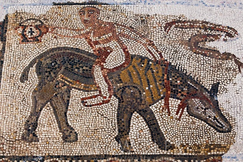 odd mosaics. artwolfe.photoshelter.com The Acrobat's House, Volubilis, Morocco