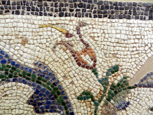 Flower detail. Corinth, Greece. Photo: Helen Miles Mosaics