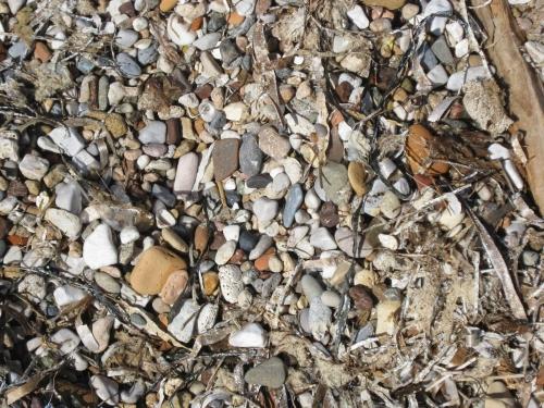 seashore corinth