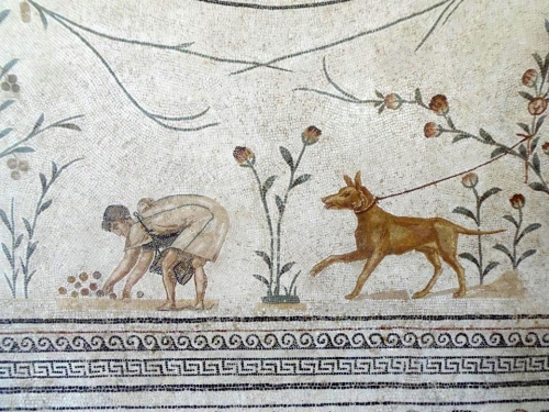 Bardo Museum. dog and worker.
