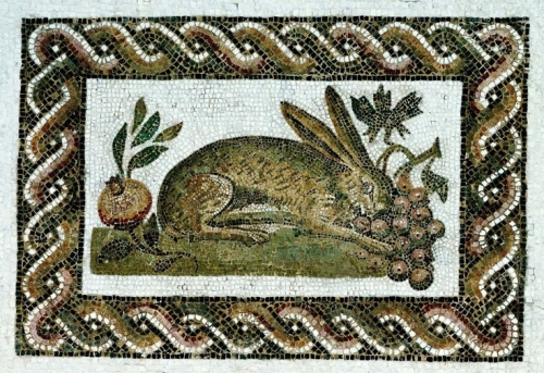 hare and grapes