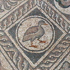 Delphi mosaic duck
