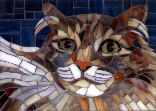 christine brailler cat