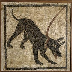 scary dog mosaic_the inspiration
