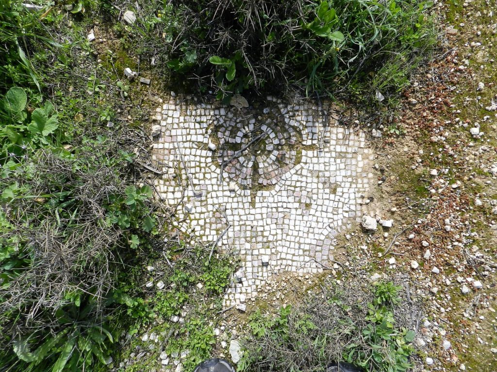 mosaic fragments in the grass