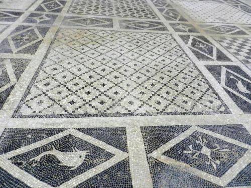 Floor view, Isthmia