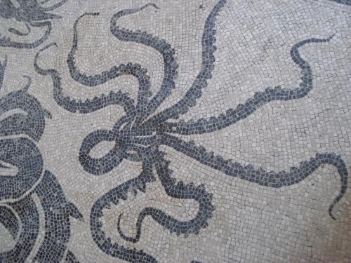 Mosaic floor in situ, Pompeii bath house.