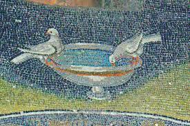 Ravenna birds