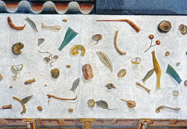 The Story of C. and her Un-Swept Floor Mosaic