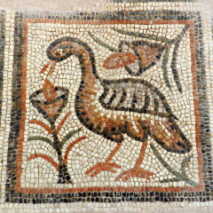 Bird and flowers. 6th century basilica. Byzantine Museum of Thessaloniki.