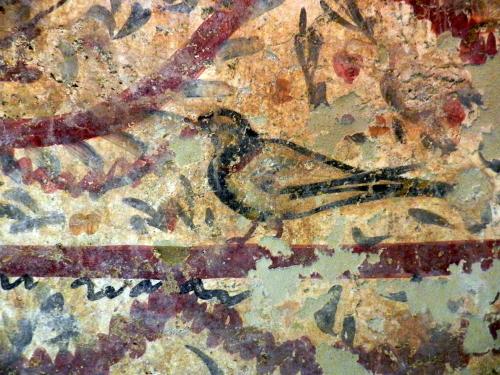 Pigeon. Early Christian tomb painting, Byzantine Museum, Thessaloniki.