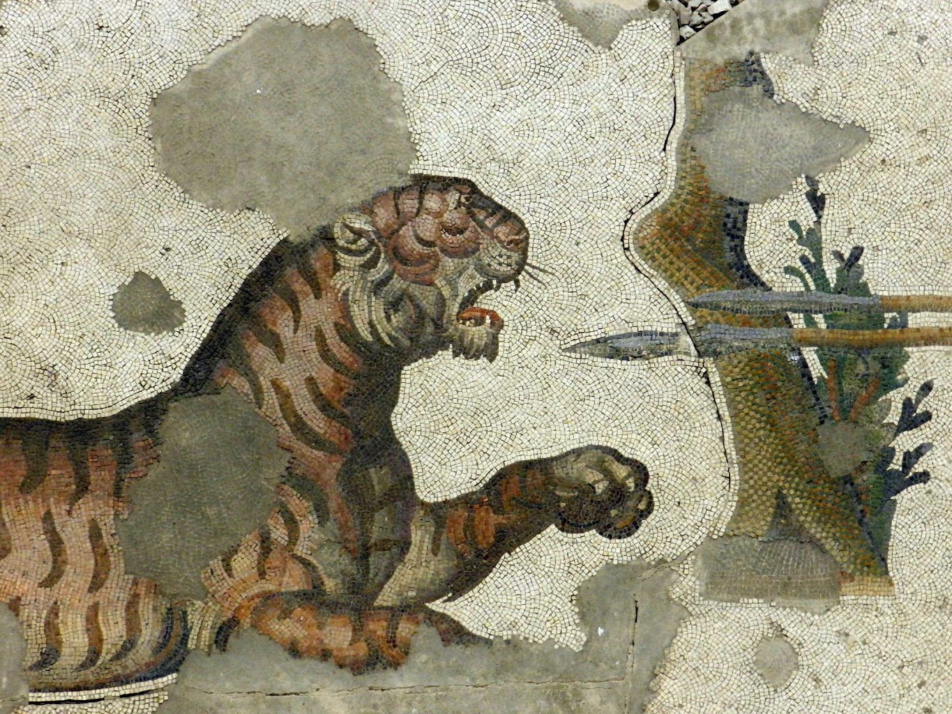 Ancient mosaics and big cats
