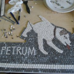 scary dog mosaic_work in progress, half way