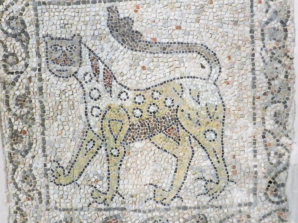 Cheetah. Mosaics of San Giovanni Evangelista, Ravenna.