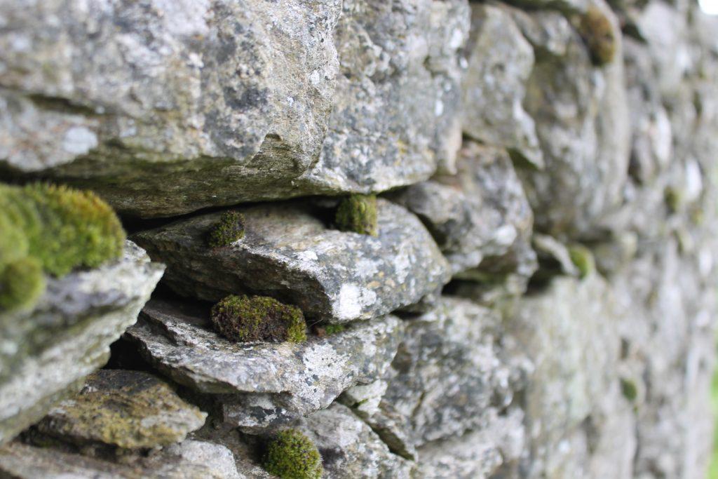 Dry stone wall, detail, Perthshire, Scotland