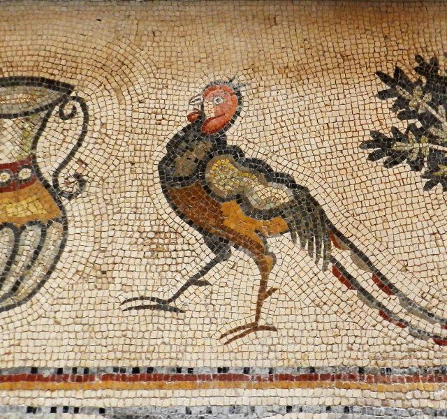 The Mosaics of Jordan: A photo gallery