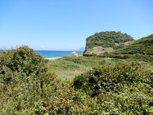 view of Theotokos site